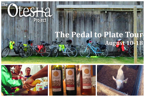 Otesha's Multigeneral Pedal to Plate Tour hits the GTA this August